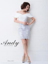 AN-SK170 | Gray